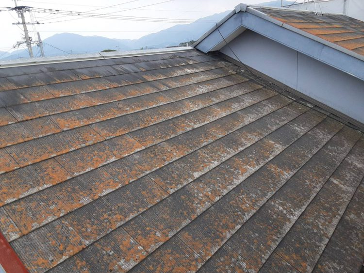 roof.before-image